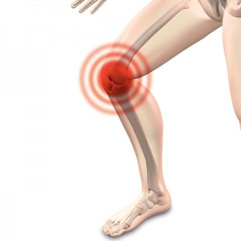 UKE-Gesundheitsakademie: Was die Knie schützt
